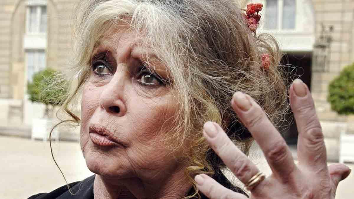 A 86 ans, Brigitte Bardot est condamnée par la justice !