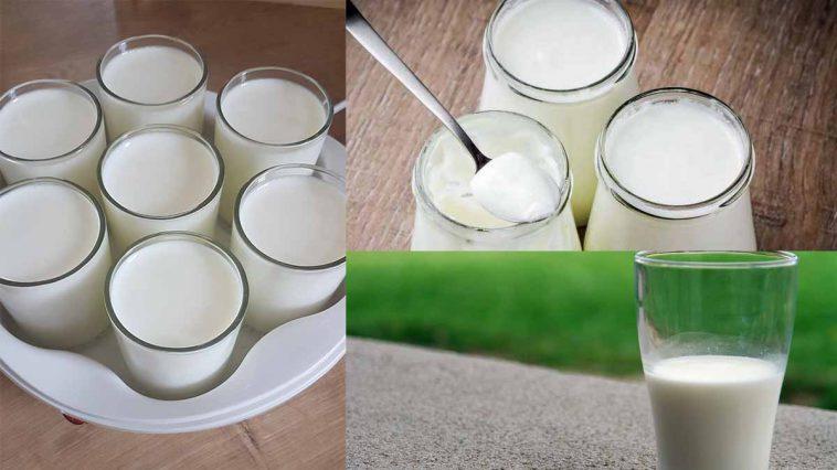 Découvrez cette super nouveauté à moins de 4 € pour faire vos yaourts maison sans yaourtière