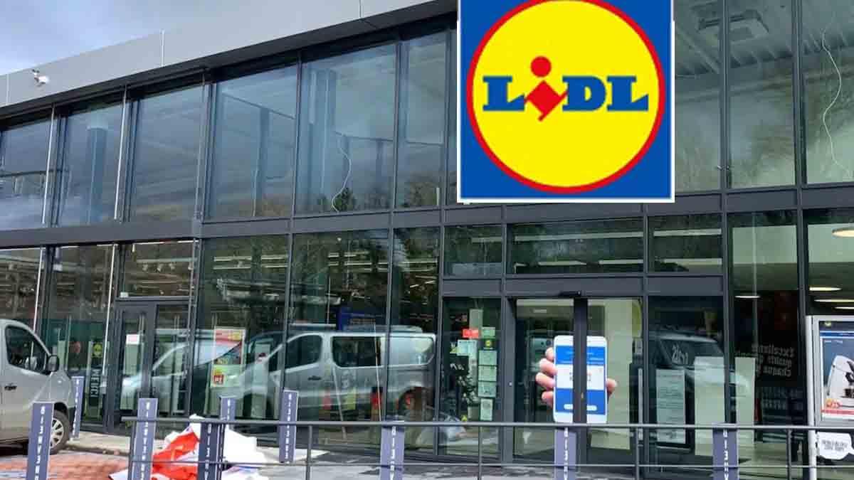 Lidl fait sensation avec son appareil de cuisine économique proposé à moins de 100 euros !