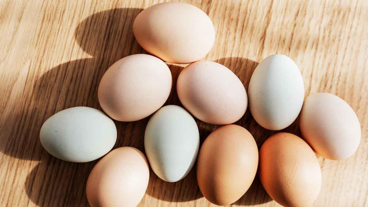 Voici comment savoir si vos œufs sont frais ou déjà périmés