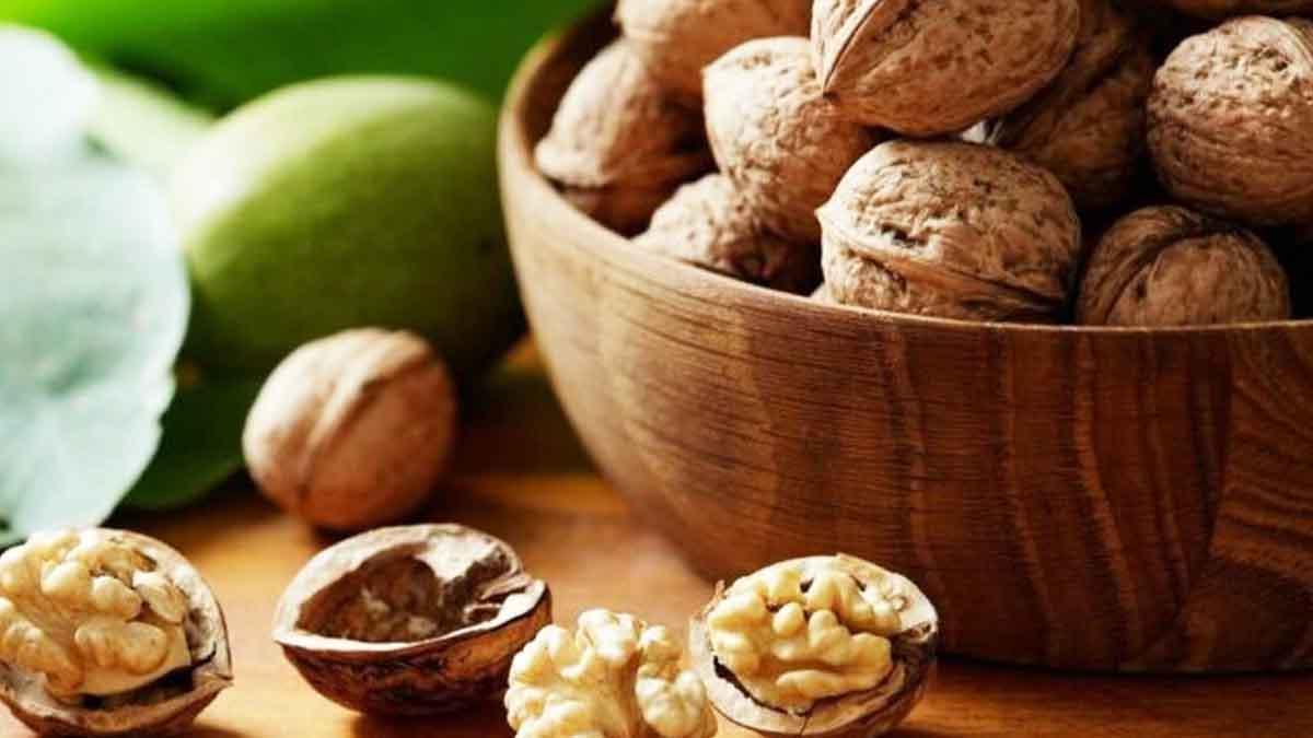 Astuces pour bien conserver les noix après leur récolte